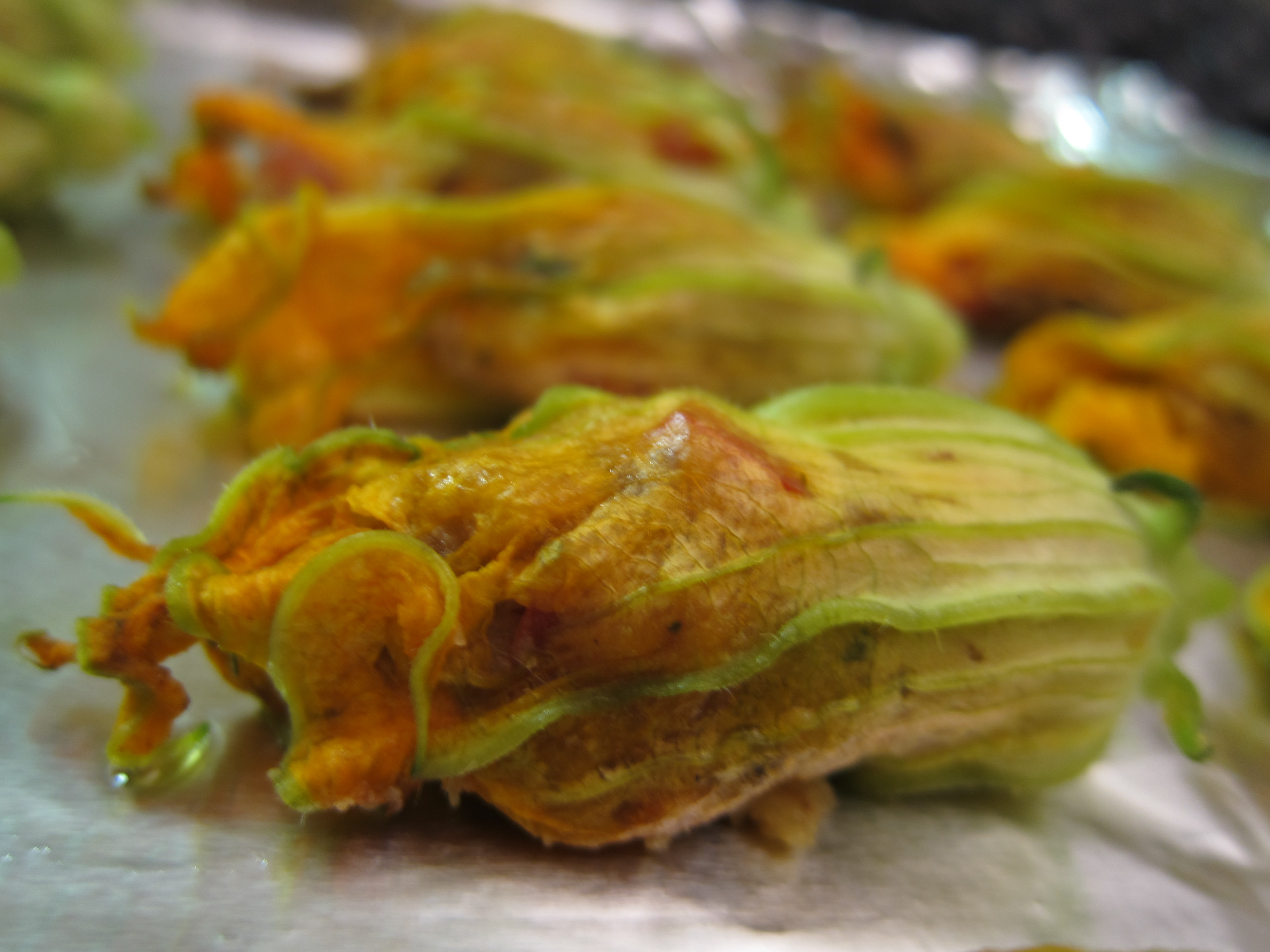 Zucchini Blossoms Stuffed with Tomatoes and Parmesan | food comas