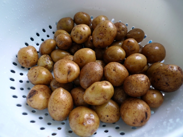 mini potatoes
