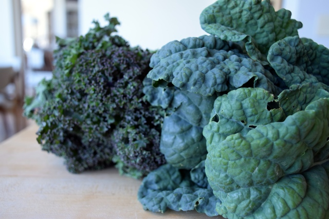 """lacinato """"dino"""" kale and red russian kale"""