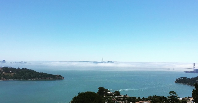 summer fog of SF city